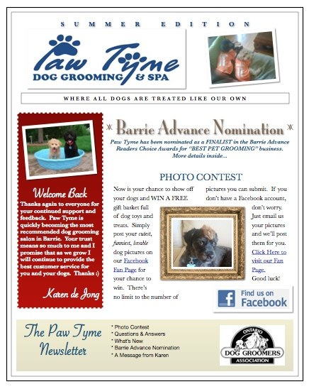 Dog Grooming Newsletter - Summer 2010